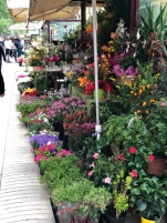 Bright flores brighten Las Ramblas