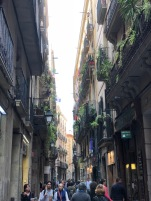 Wandering the streets of the Barri Gotic (Gothic Quarter)