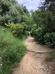 Trekking in the foothills of Mount Tibidabo