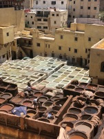 The tanneries dying leather