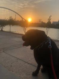 He enjoys walks along the river